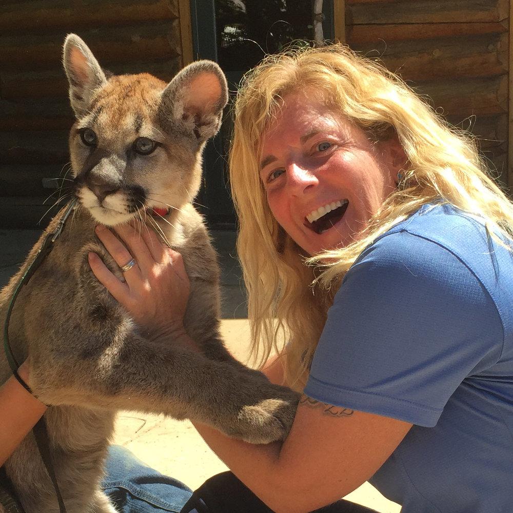 beth cougar kittenJPG.jpg
