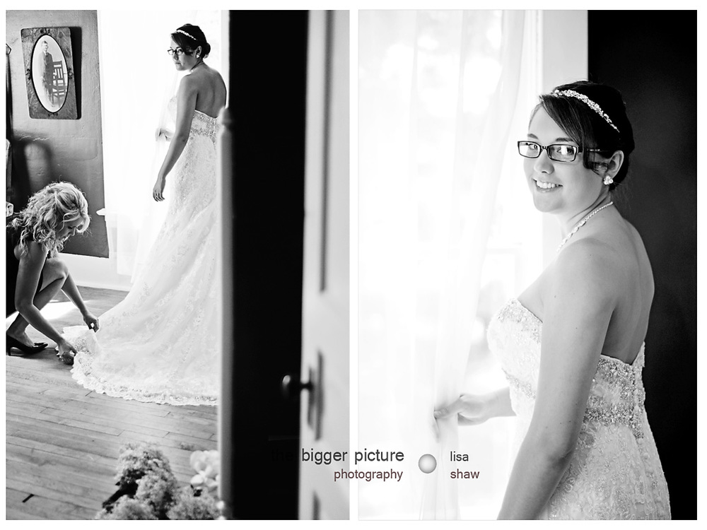 wedding photographer in ann arbor mi.jpg