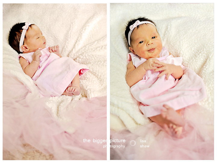 detroit newborn photographers.jpg