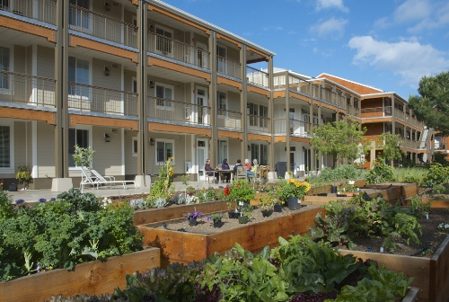 Garden and apartments. Mountain View Co-Housing Californai