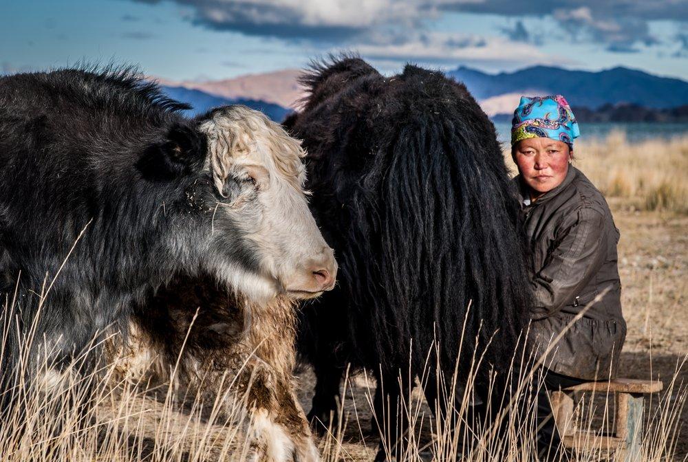 sister in law miling yaks.jpg