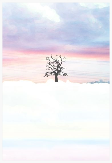 Winter Tree, Campsea Ashe  - UltraCrome on UV cured Photographic Board Framed 60x77cm (portrait) | Price £325 Framed. Print run of 25