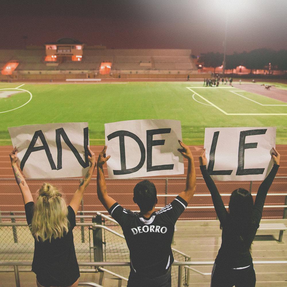 ANDELE.2.3.jpg