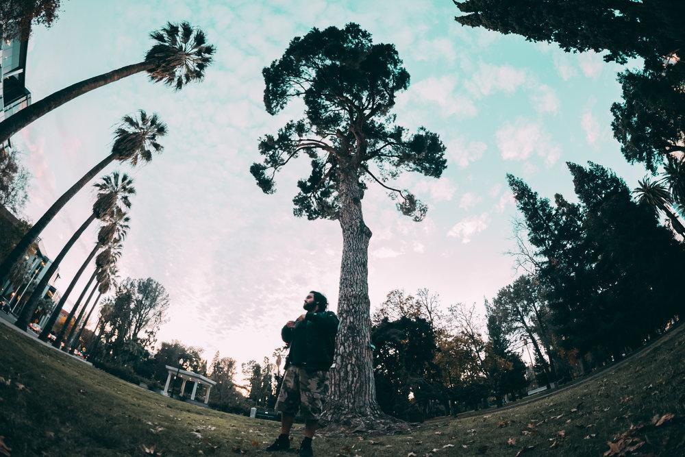 Sacramento-9234.jpg