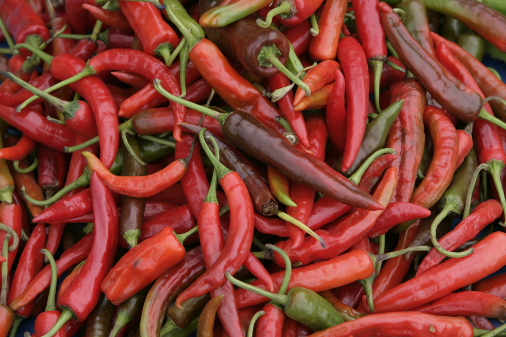 Red chillies-main ingredient of Bhutanese cuisine