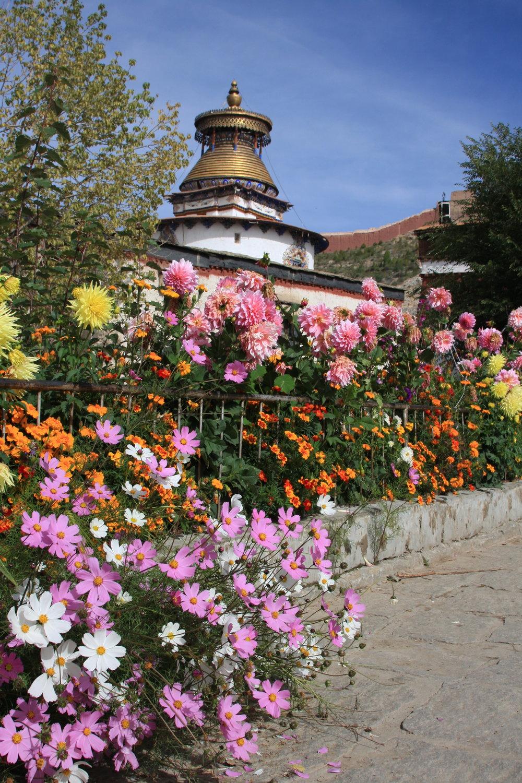 Gyantse Pelchoe Monastery