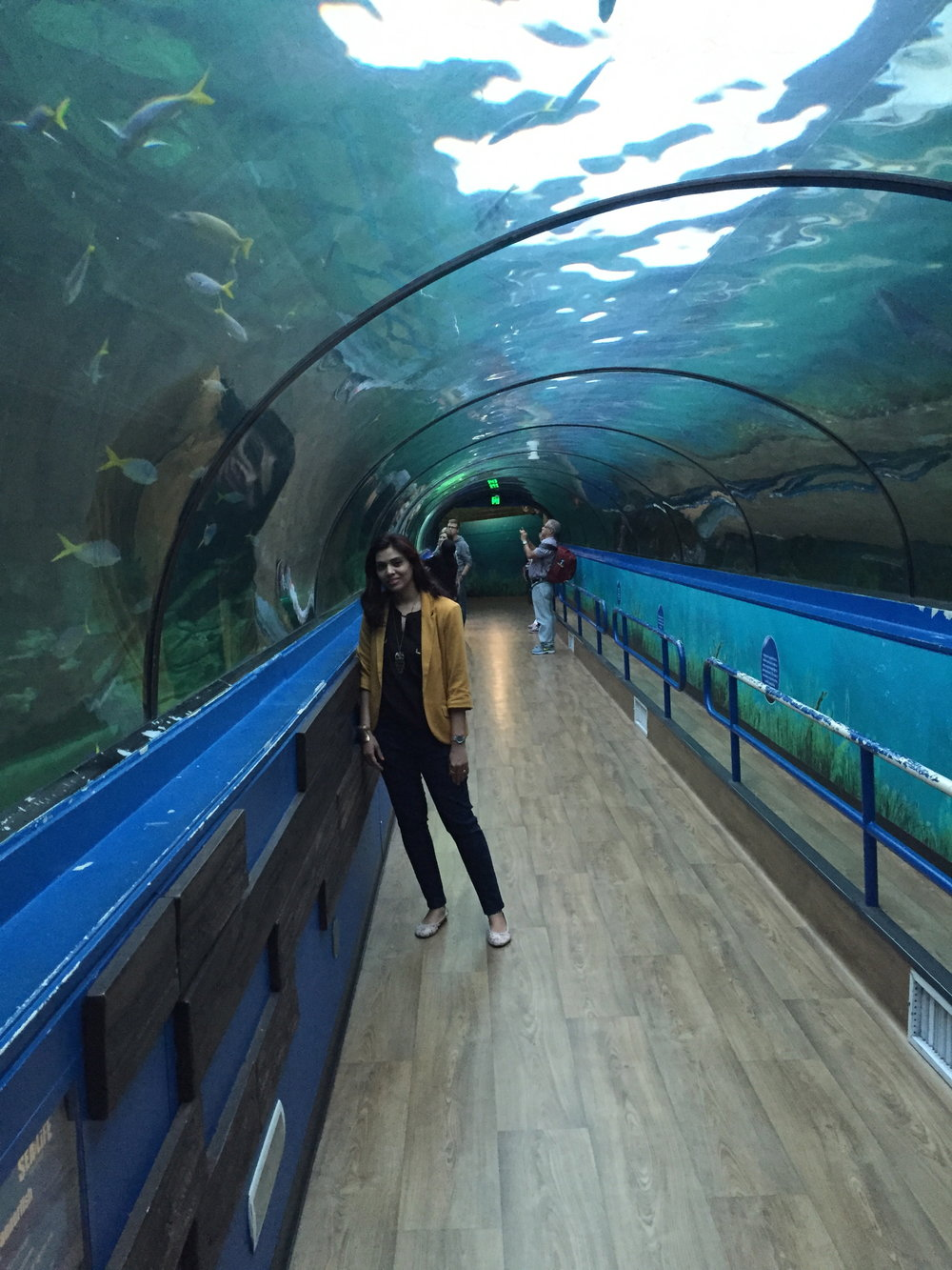 Sydney Aquarium tunnel