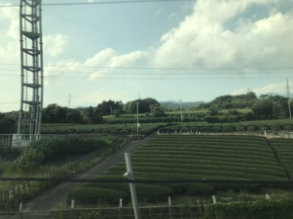 A breathtaking view from the Shinkansen