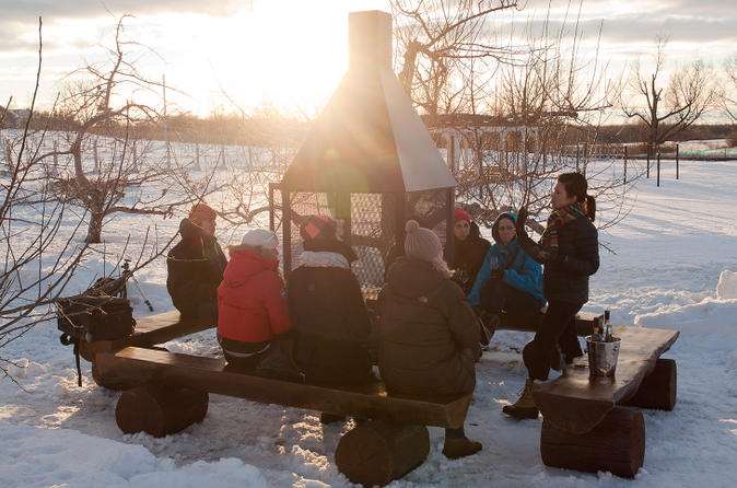 Ice wine tour