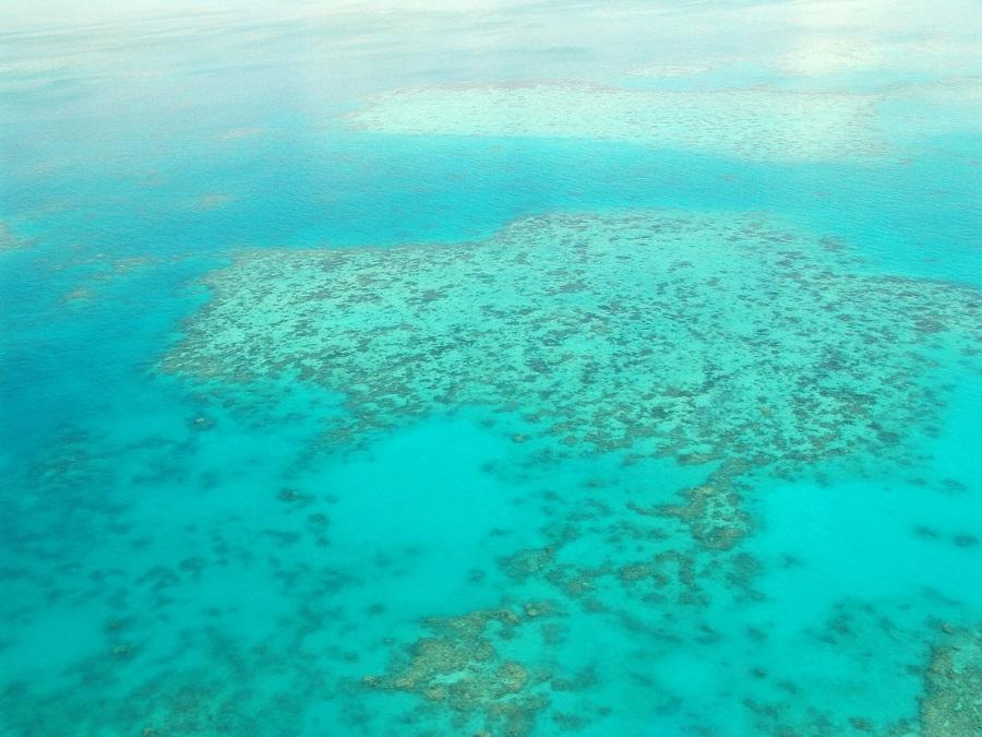 great-barrier-reef.jpg