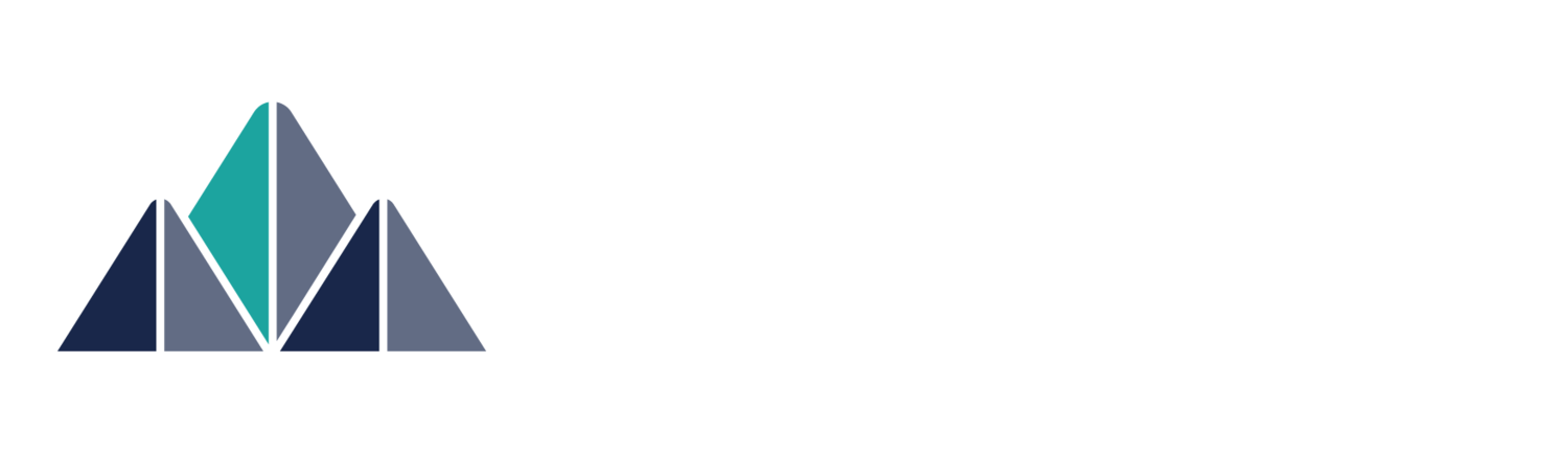 Vista Lead Generation
