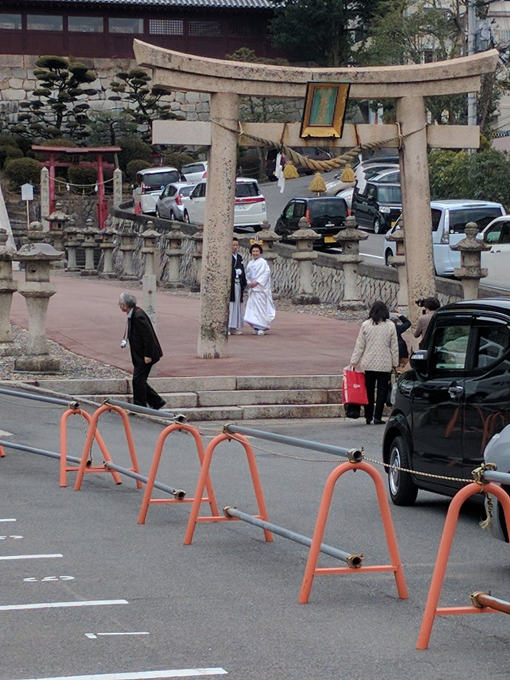 Spotted! Wedding photos!