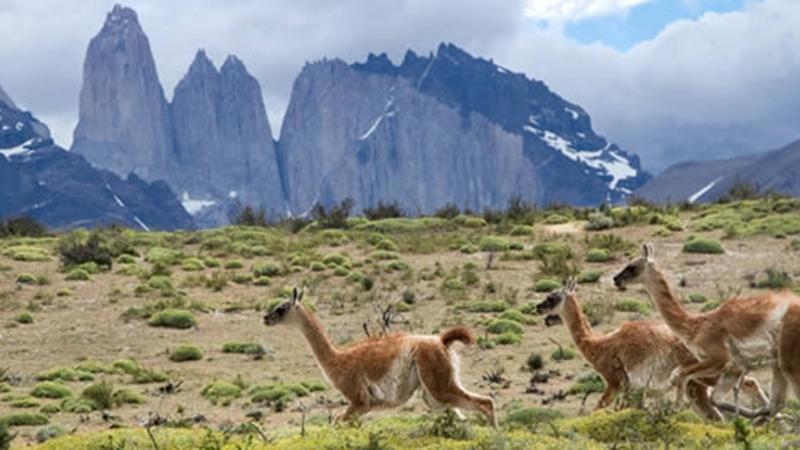 patagonia-views