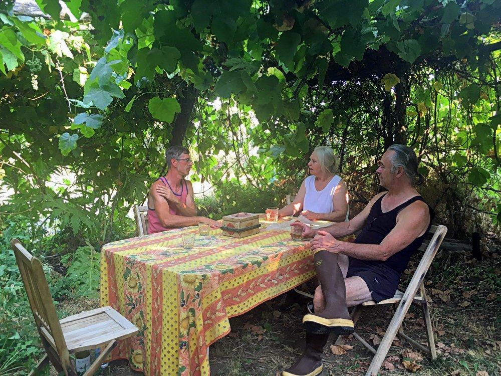 farm to table wellness food
