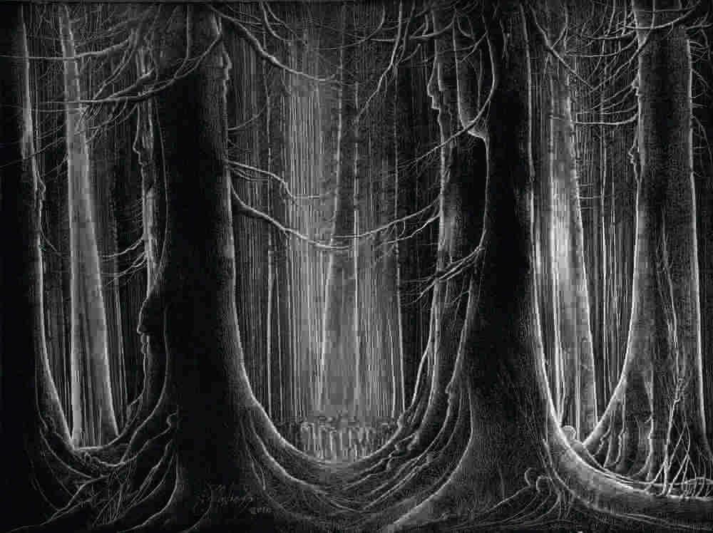 niazi forest12.jpg