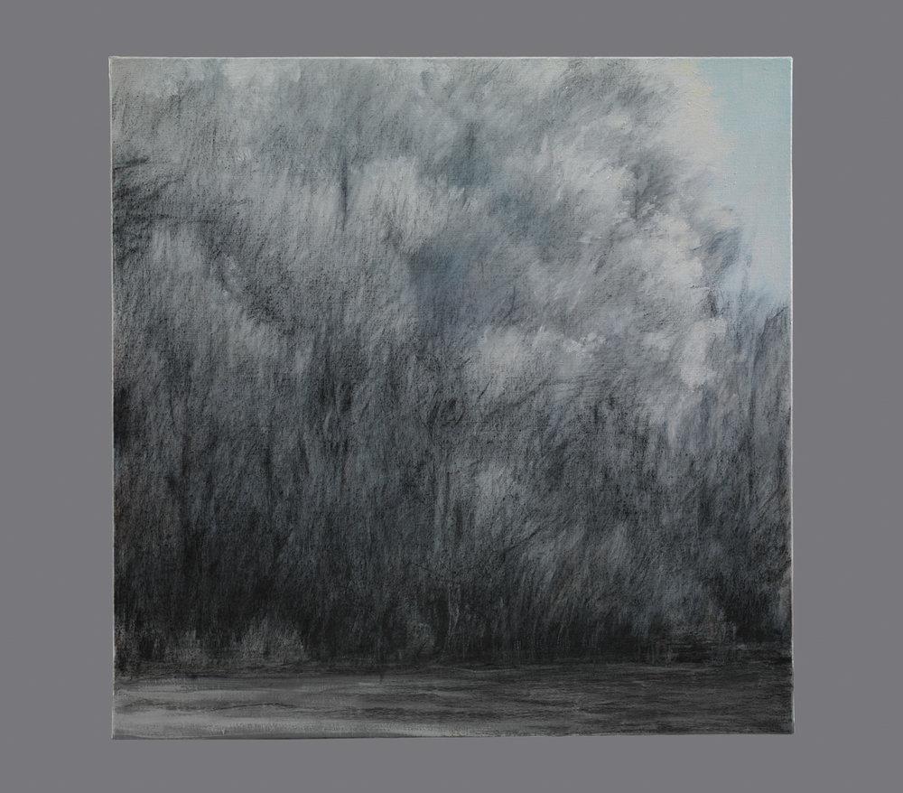 Soleil d'hiver.Fusain et acrylique sur toile. 80x80 cm. 2016