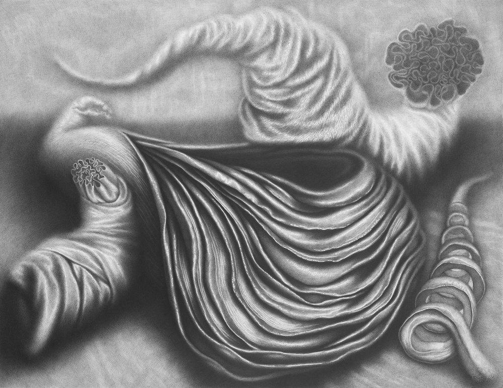 Davor Vrankic  - LES CADEAUX, 2010, mine de plomb sur papier, 50x70 cm.jpg