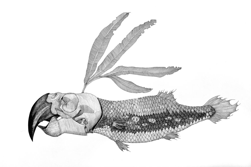He Ling - bird bone fish, 2011, Needle pen on paper, 57x77cm.jpg