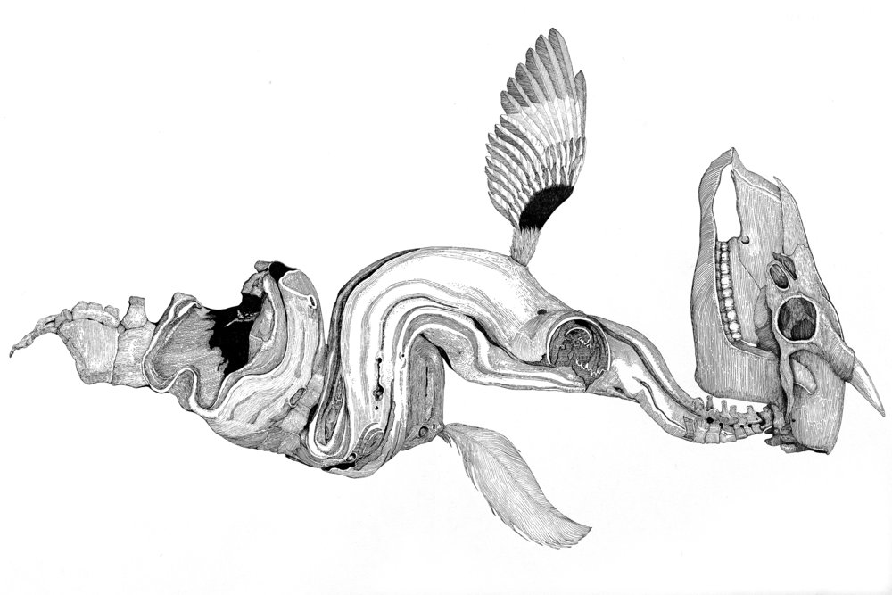 He Ling - Unknown creatures No.1, 2012, Needle pen on paper, 57x77cm.jpg