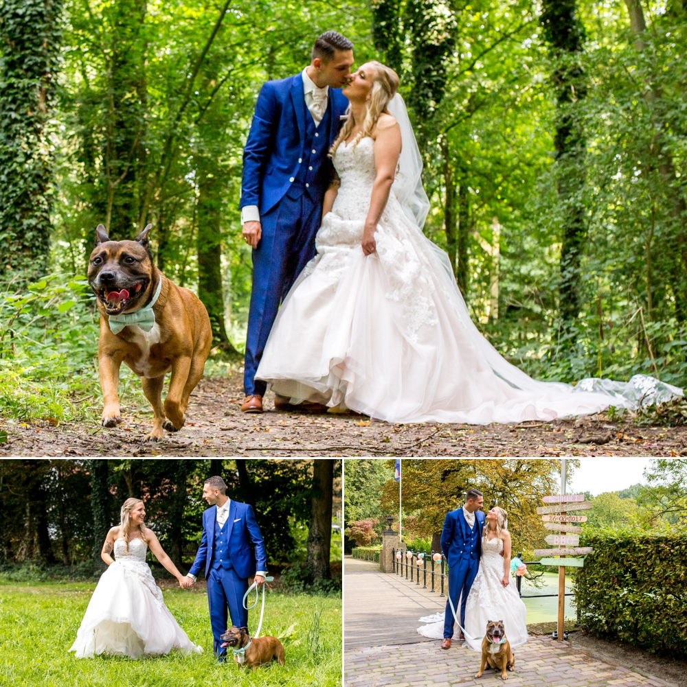 honden-op-bruiloft