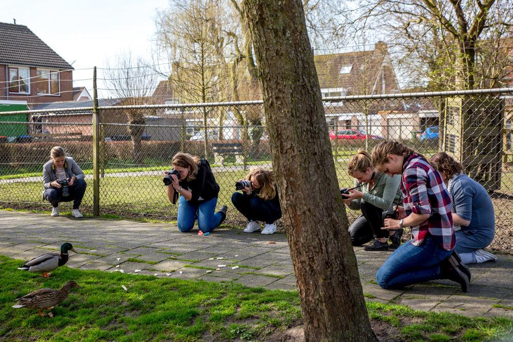 basisfotografie cursus