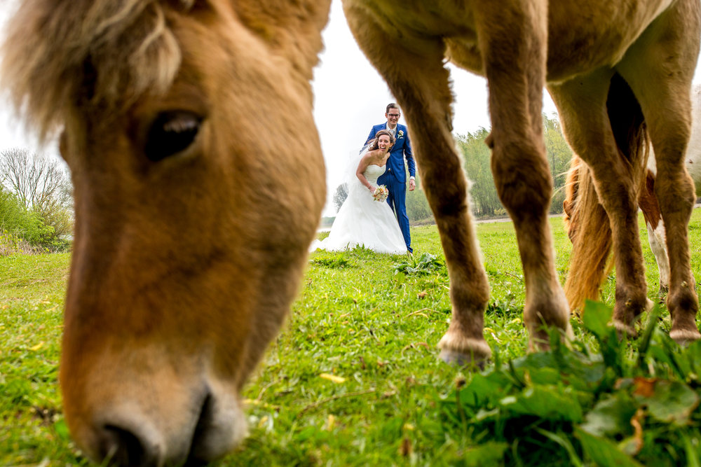 trouwreportage maassluis