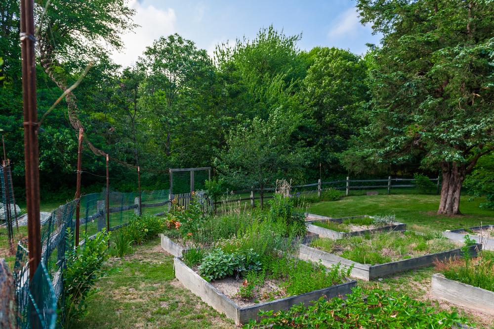 garden 128 old Farm.JPG