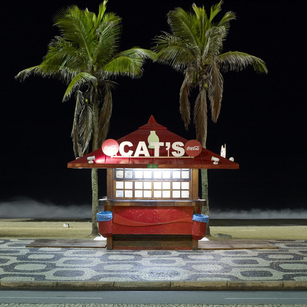 Cat's.jpg