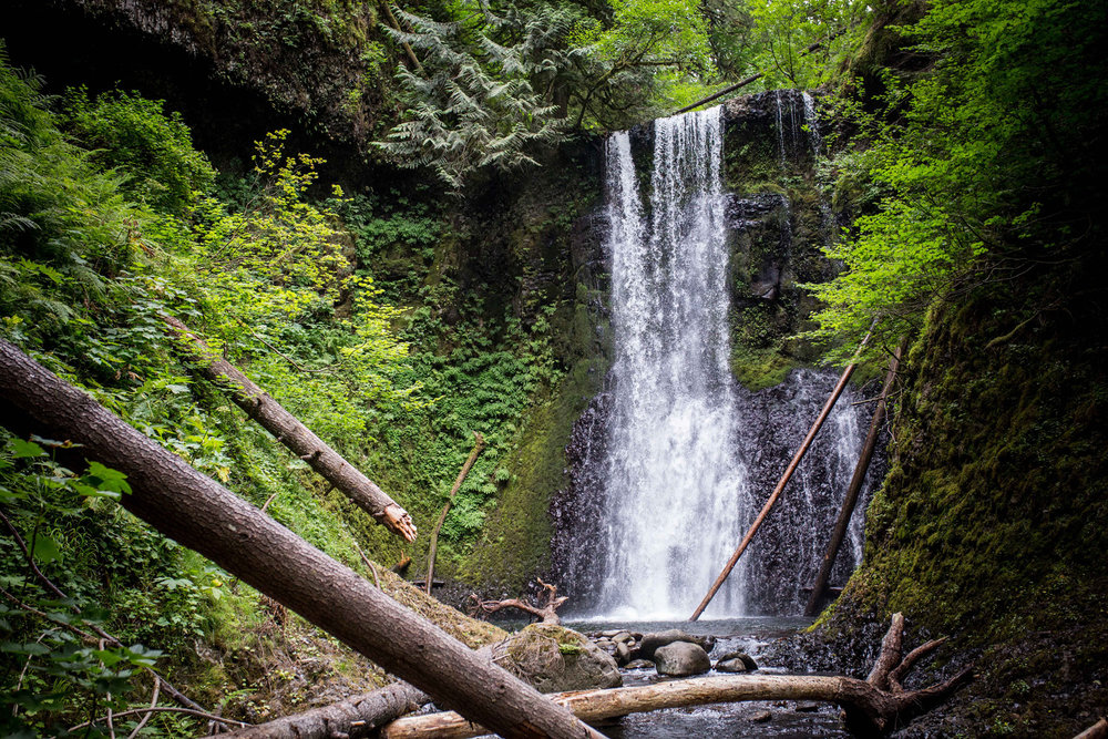 Ecola Falls in the Columbia Gorge