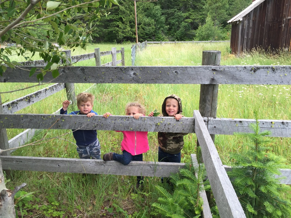 "Breaking rules at a young age and crossing over barriers that say ""no trespassing""...I'm pretty sure they take after their parents. :)"