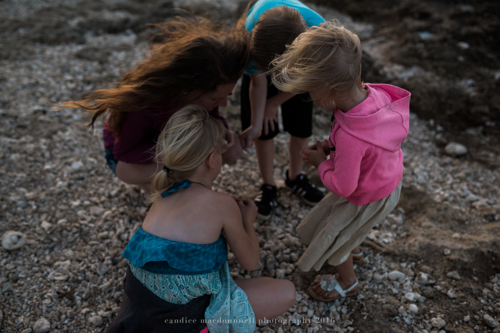 family looking for sea shells at kaena point beach lifestyle photography by candice macdonnell photography, oahu hawaii documentary photographer