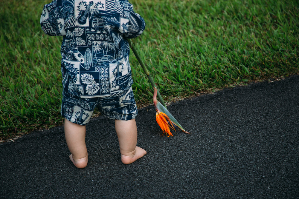 missouri lifestyle photographer session with boy wearing hawaiian clothing