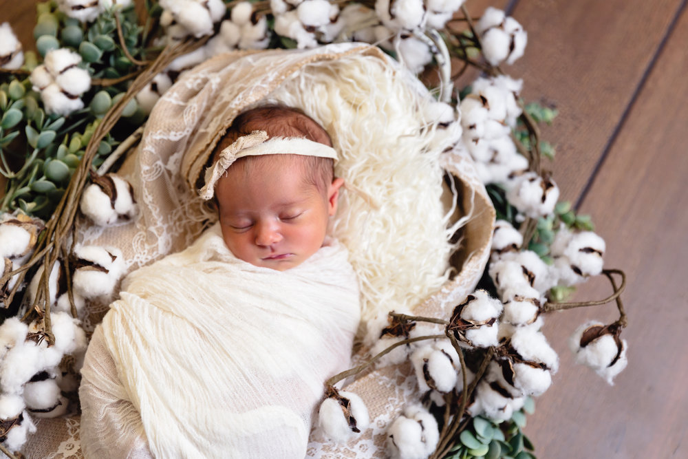 newborn baby photography swaddled with cotton and greenery in waynesville mo studio