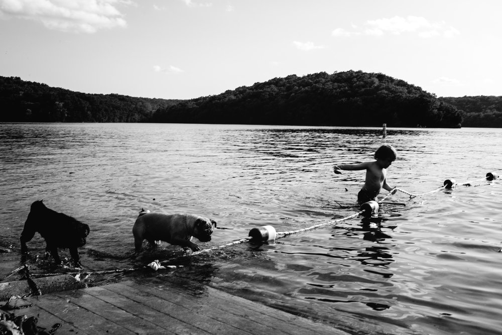 boy with pug dogs swimming waynesville missouri