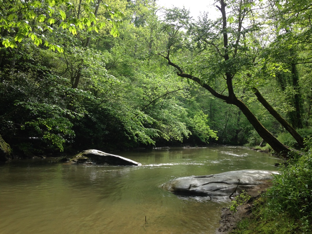Swannanoa River, Warren Wilson River Trail