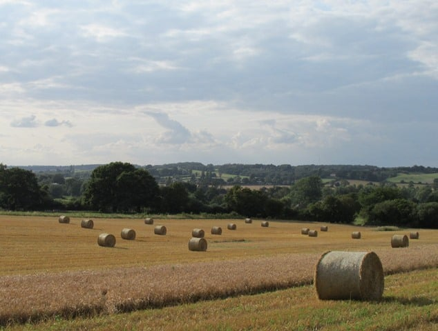 Harvest View Lower Dairy Farm