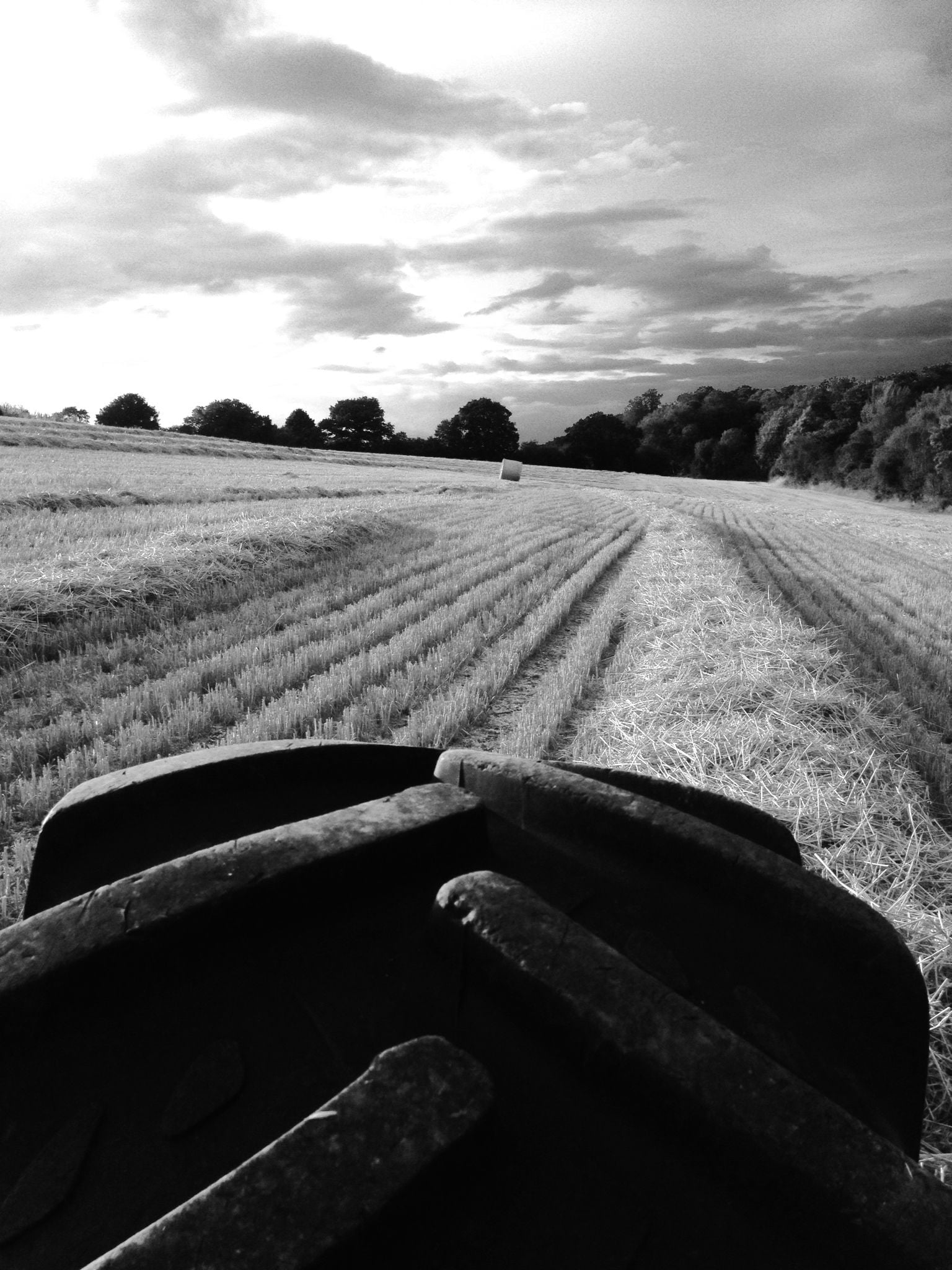 Baling by Pitchbury Wood