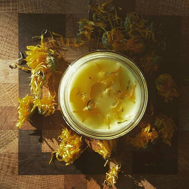 Sacred Solutions Calendula & Chamomile soothes dry itchy skin while you smell like an amazing cup of chamomile tea! #sacredsolutions #herbal #natural #organic #calendulasalve #tattoosalve #reducesredness #chamomile #chappedskin #dryskin #inflammation #handmade #withlove #hardwork #etsyshop 🍃🍂🍁🌿🌾 www.sacredsolutionsskincare.com