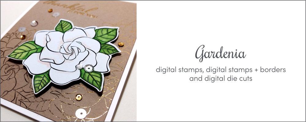 GardeniaBanner_main_jmogford.jpg