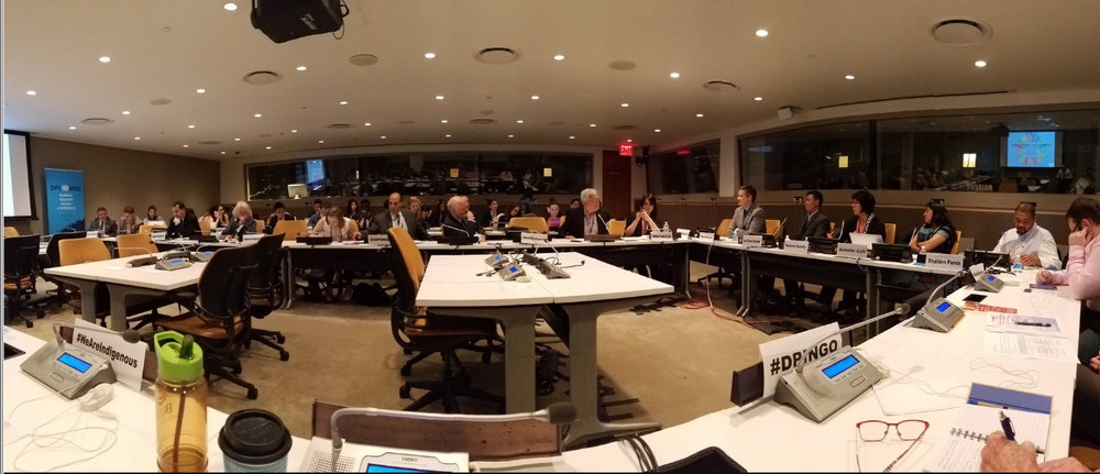 Indigenous peoples make up 5% of the world's population, but 15% of the poorest  # DPINGO    @ UN4Indigenous    pic.twitter.com/otUaUBsESq