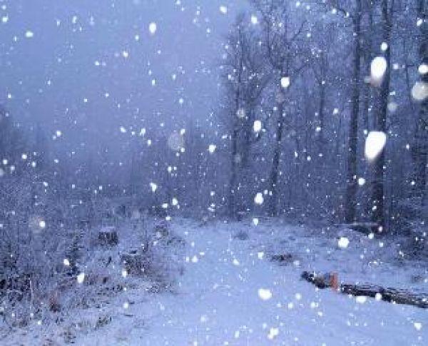 snežinke.jpg