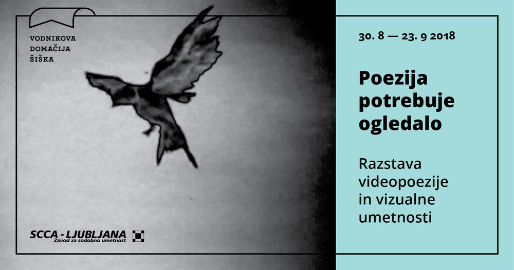 Poezija potrebuje ogledalo.jpg