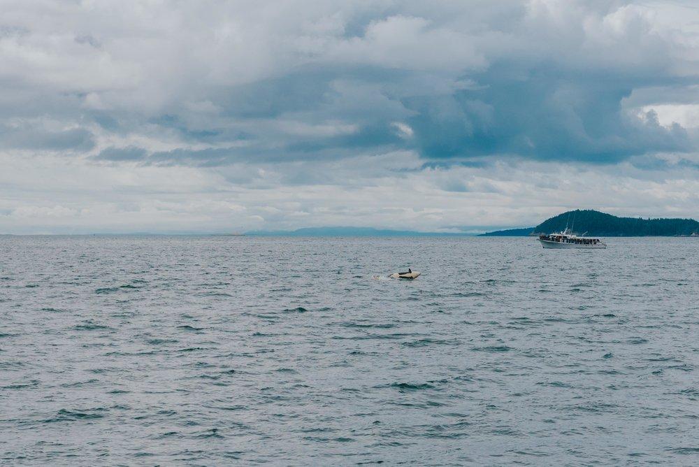 Orcas-Island-Wedding-Photographer (38 of 106).jpg
