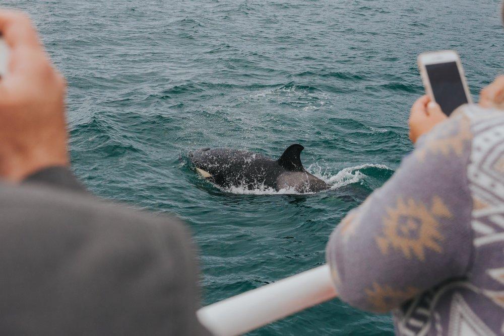 Orcas-Island-Wedding-Photographer (35 of 106).jpg
