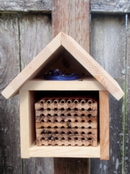 My very first Blue Orchard Mason Bee house.