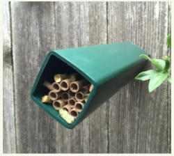 "A native bee house can by tiny, but it must bee deep enough to safely hold tubes that are about 6"" long."