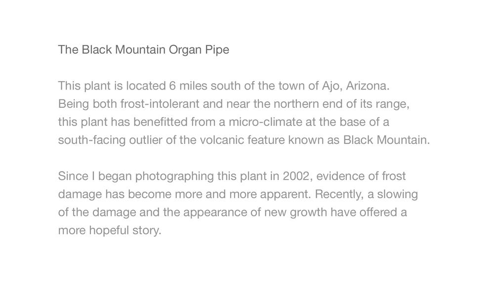 Black Mtn OrPi_3.jpg