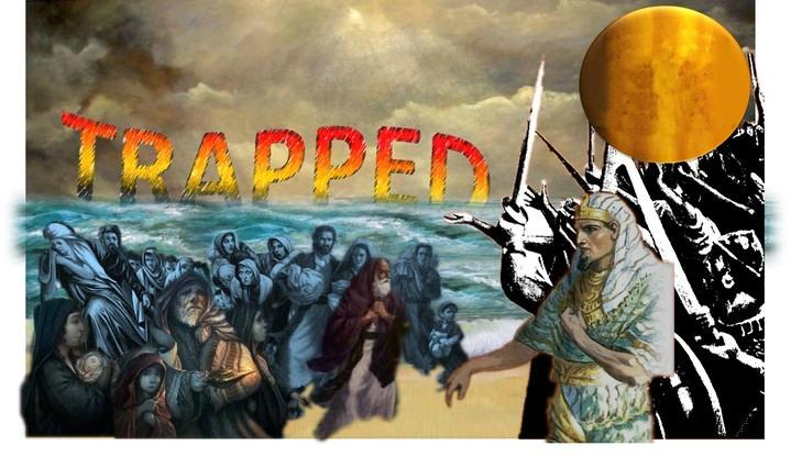 720_Trapped_EgyptRedSea.jpg