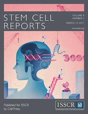 xiaohong s paper featured on the cover of stem cell reports