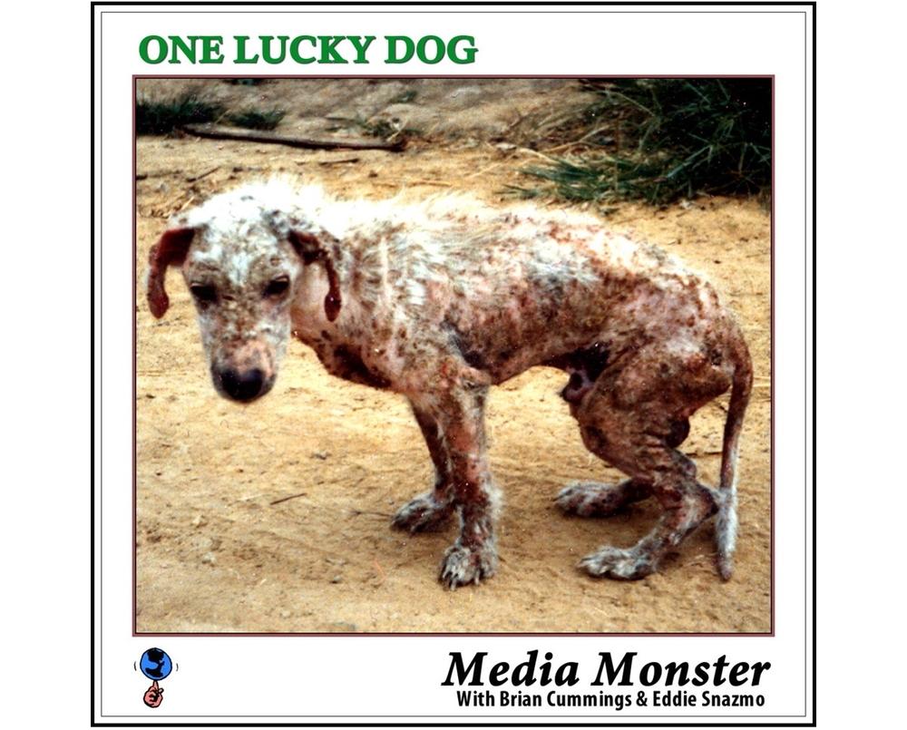 One Lucky...Rebuilt-Framd.JPG